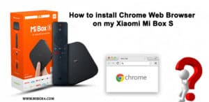 install Chrome Web Browser